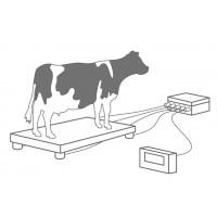 Где применяются тензодатчики в сельском хозяйстве