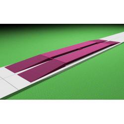 Весы автомобильные электронные 40 или 60 тонн 8 метров бесфундаментные с пандусами (опция)